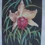 Orquídea. Viera Farina