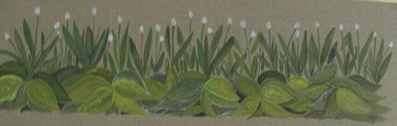 Hostas y tulipanes. Annic Ringot Aringot