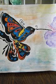 Colibri harlekin.