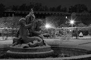"The Frozen Fountain Serie ""Gärten verschneiten"". Emmanuel Da Silva"