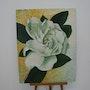 Grande fleure blanche. Viera Farina