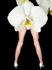 Mujeres desnudas piernas Dreams: Dios…. Claude Jurascheck
