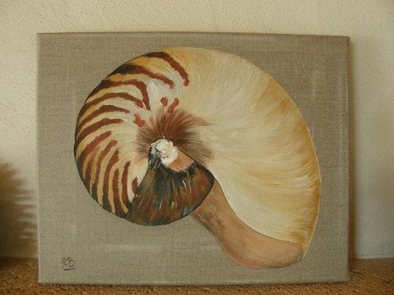 Shell. Raphaële Raphaële