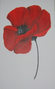 Poppy # 48. Christine Vanacker