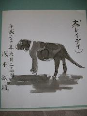 Inu (Lady). Toshio Asaki