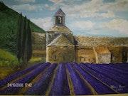 Abbaye de Sénanque avec le champ de lavande.