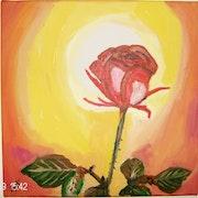 Beleuchtete Rose.