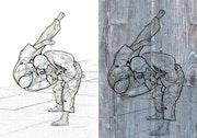Judo1 on wood or canvas. Co-Ré-Graph