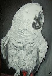 Parrot Simone.