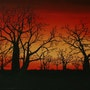 Baobabs. Passion Déco