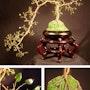 Jade Kaskade Nr. 1, Draht tree sculpture. Tree Sculpture By Sal Villano