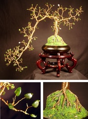 Jade cascade No. 1, Wire tree sculpture.
