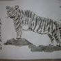Eto-Tora (tigre). Toshio Asaki