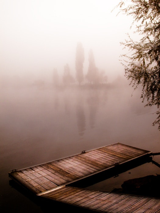 Pond in the mist. Christophe Cotichelli Christophe Cotichelli