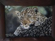 Leopard. Nellie Visser