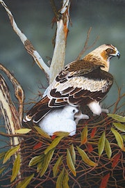 This painting of Eagle & Chick was painted in oils.