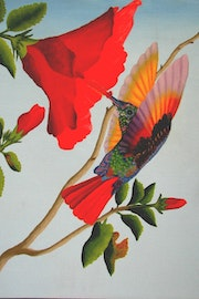 This painting of a Humming bird was painted in acrylic.