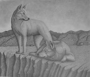 This drawing of Dingo's was done in graphite..