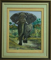 Der Elefant. Marc Hoareau