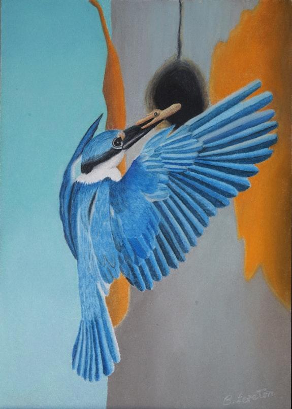 Bluebird. Brian L Art Brian L Art