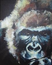 Gorilla 7.