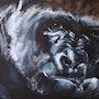 Gorilla 22. Delphine Pellizzer