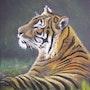 Le tigre. Bernard Sannier