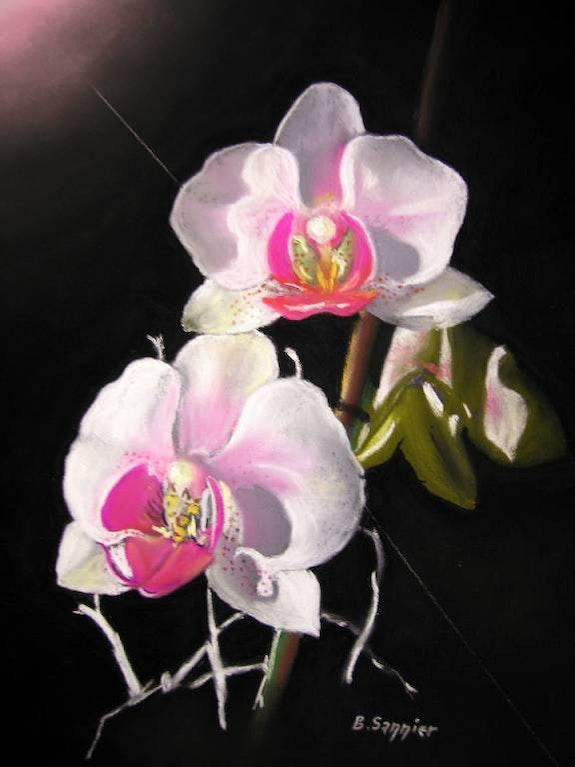 L'orchidée lumineuse. B. Sannier Bernard Sannier