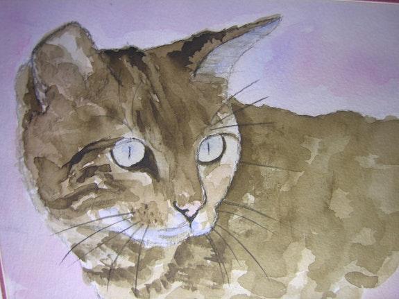 The cat -12/06. B. Sannier Bernard Sannier