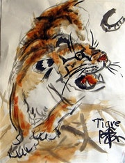 Tigre. Yan De