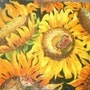 Sunflowers and butterflies. Eileen Hersey