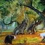 Cueillette des olives. Richard & Michèle Wolstein - Vandeneycken