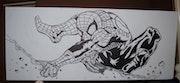Spiderman. Kirsty Smith-Neale