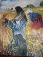 La mujer tunecina recolección de trigo.