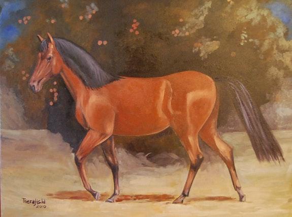 Pferd. R. Del Santo (Therafisla) Rafael Del Santo