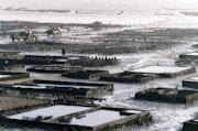 Les anciens parcs à huîtres de Cancale.. Elie