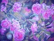 Les roses roses du jardin..