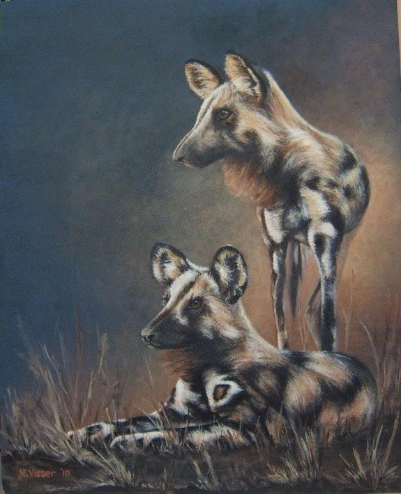 Wild dogs.  Nellie Visser