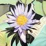 Fleur de Nénuphar. Josette Robles