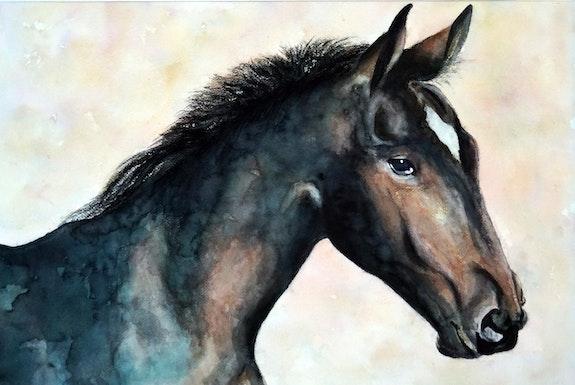 I have great need to gallop!. B. Sannier Bernard Sannier