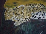 El ternura Tigro nombre dado por los habitantes de América Central jaguar.