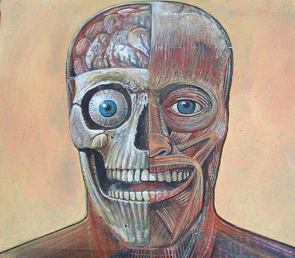 Arnold, anatomical study. Giulio Porta Giulio Porta