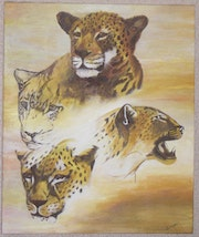 Leopards heads.