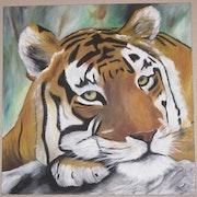 Asian tiger head.
