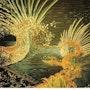 La nuit transfigurée (détail 1). Daniel Courgeau