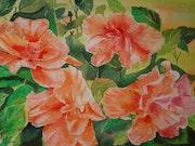Hibiscus verdoppelt.