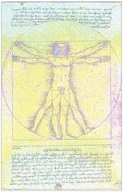 Pop Art «Vitruvian Man» Leonardo da Vinci.