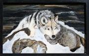 Reflexiones de un lobo en una roca?.