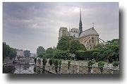 Notre Dame Paris 2005. Gilles Bizé