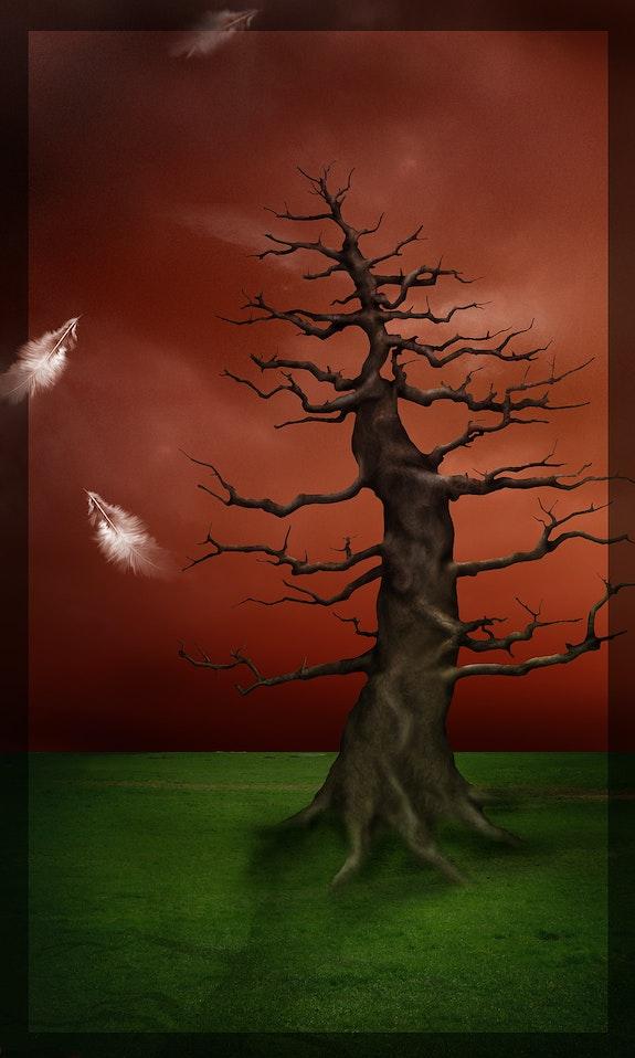 L'arbre a plumes. Christelle Dautreix-Aitsiali Christelle D-Aitsiali